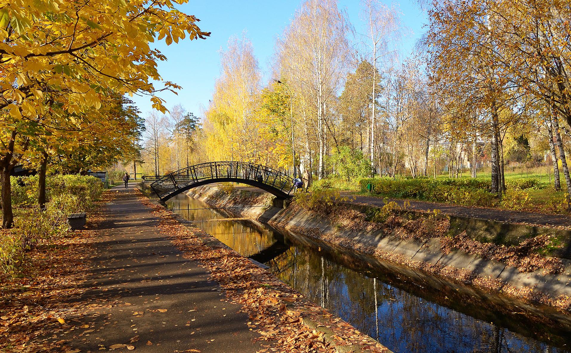 фото район Московский