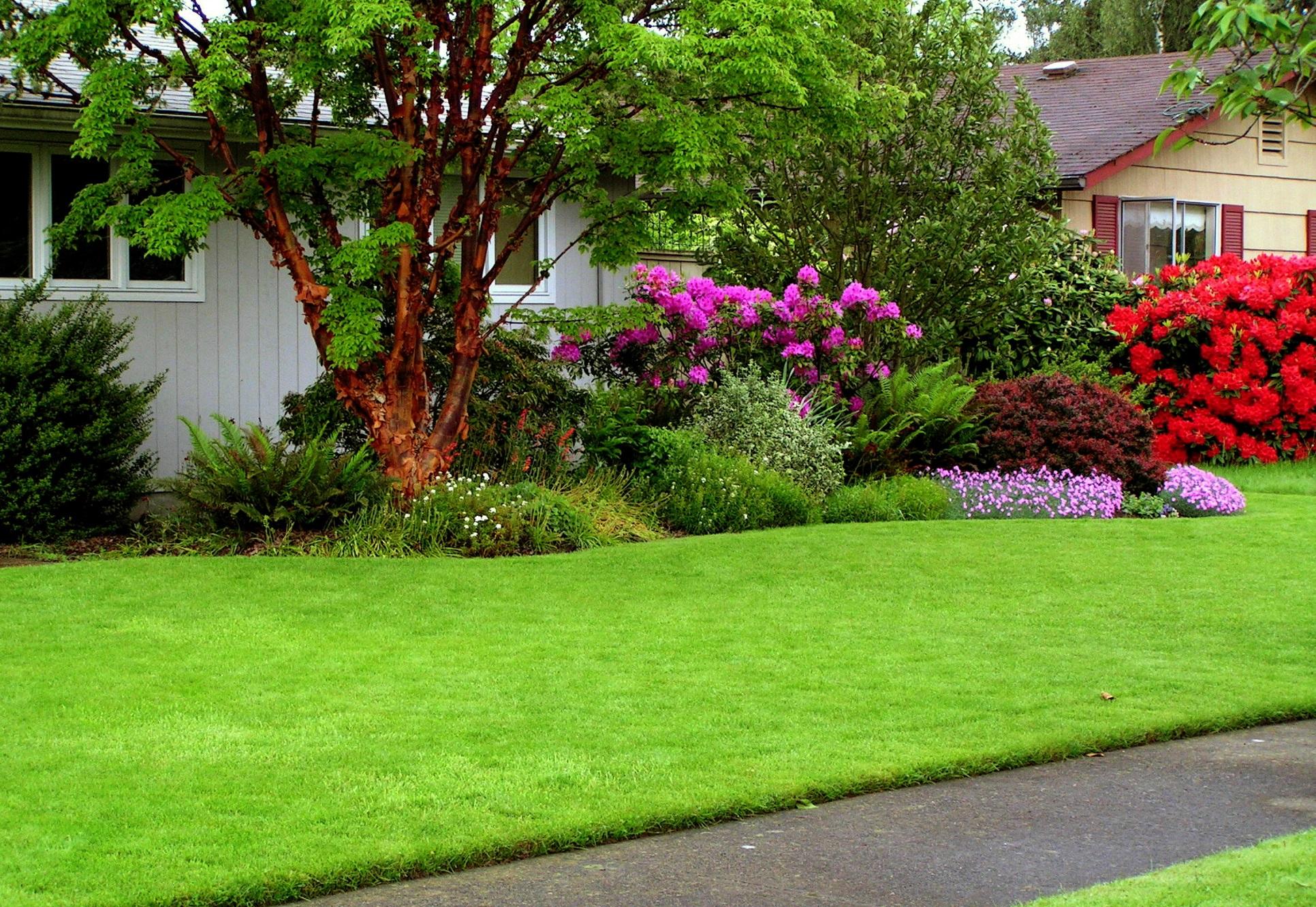 Как правильно разбить сад на даче
